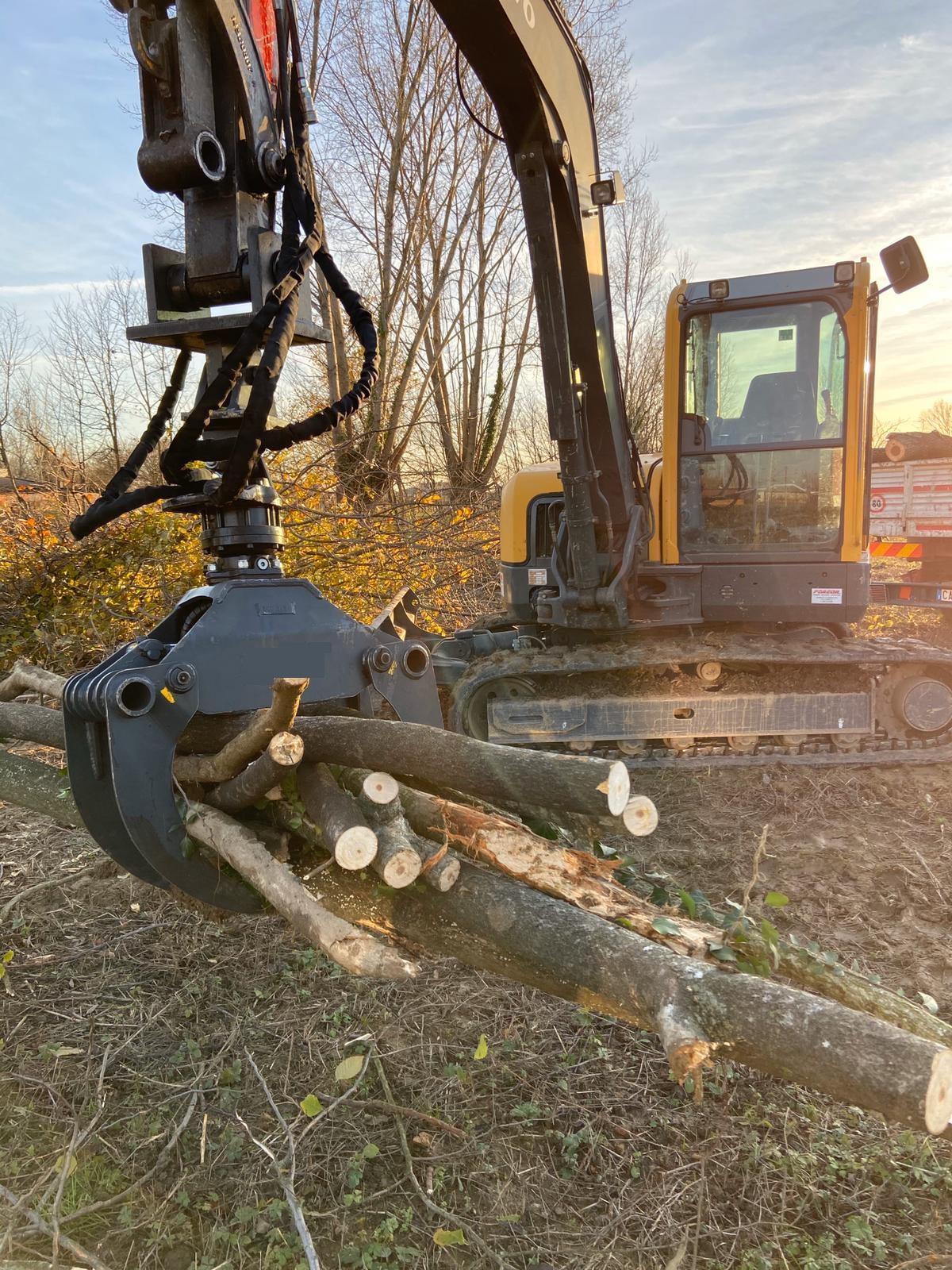pinza forestale per legna a noleggio a Padova, Vicenza e Venezia